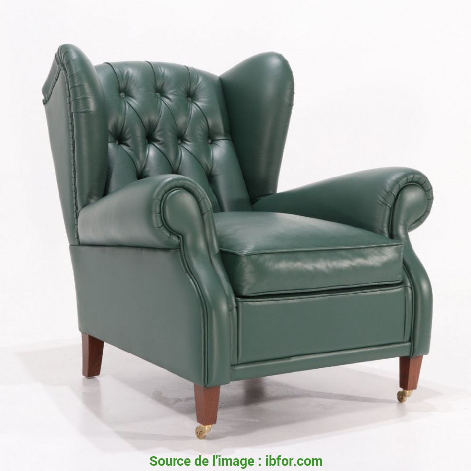 I Più Nuovi BERGERE LEATHER ARMCHAIR Version 2