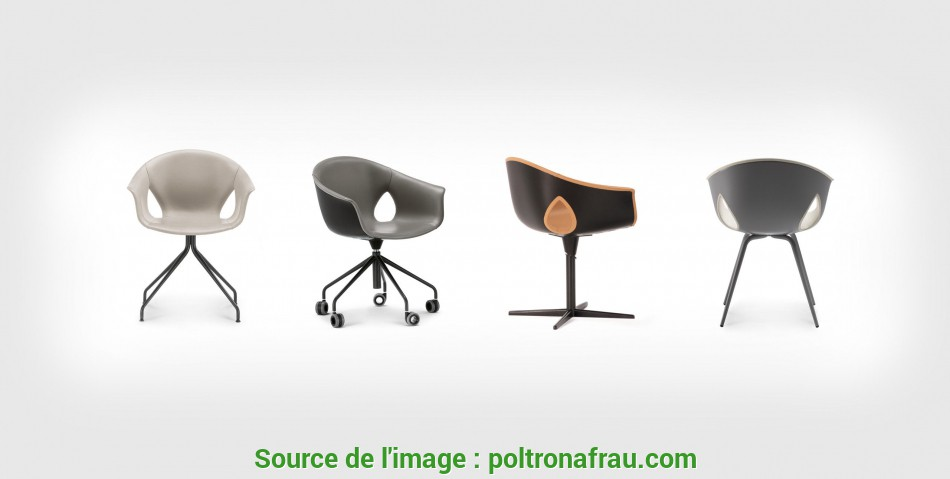 Magnifico Ginger, Chair By Roberto Lazzeroni, Poltrona Frau